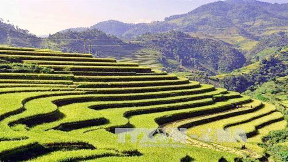 Muong Lo, Tourism-Culture Week,  Mu Cang Chai,  Terraced Field Festival, art performances, Heritage Journey, photo exhibition