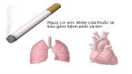 Khói thuốc lá làm trầm trọng hơn bệnh đường hô hấp