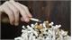 Tổn hại kinh tế do hút thuốc lá