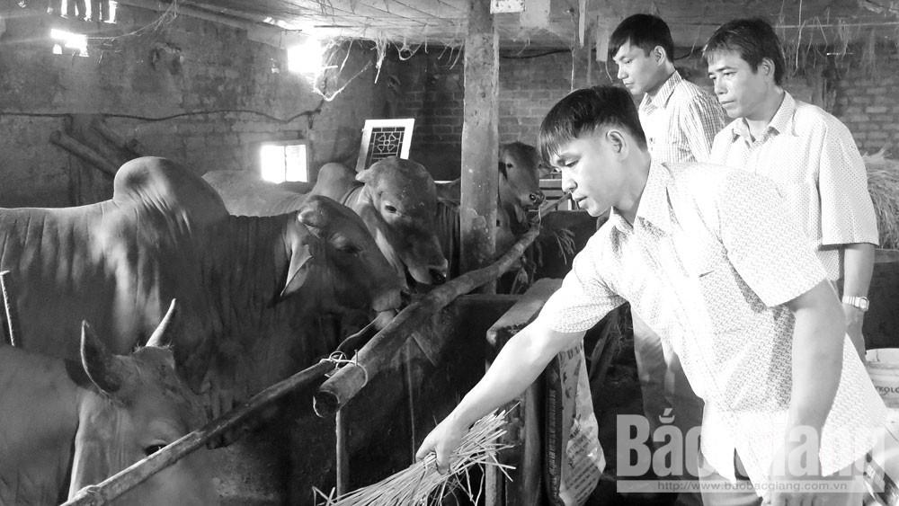 Lạng Giang, Bắc Giang, thoát nghèo, hỗ trợ, tái nghèo