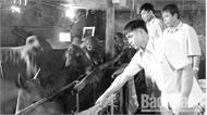 Lạng Giang giúp hộ nghèo thoát nghèo: Sát với từng hoàn cảnh