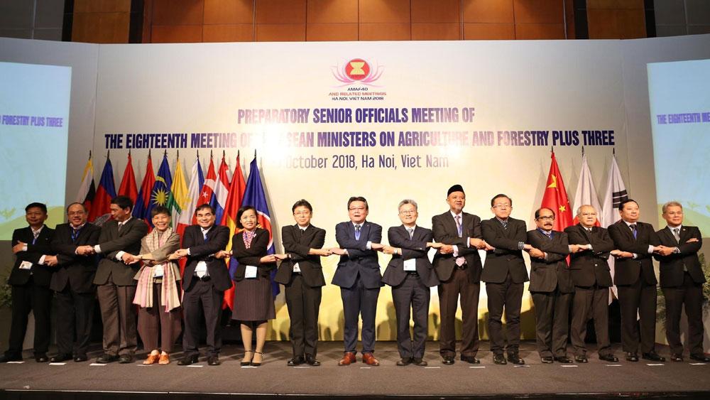 Thúc đẩy, thương mại, nông, lâm, thủy sản, các nước ASEAN+3