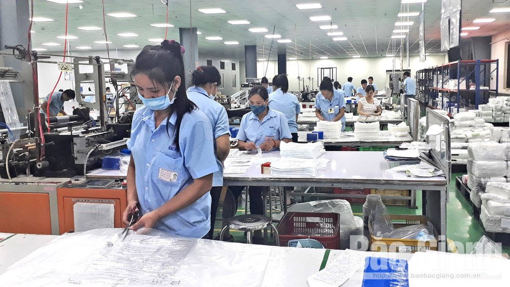 Bắc Giang, doanh nghiệp, ngân sách nhà nước