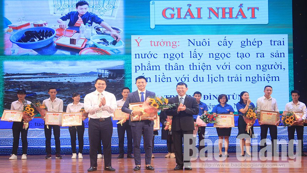 Bac Giang awards youth innovative startup contest