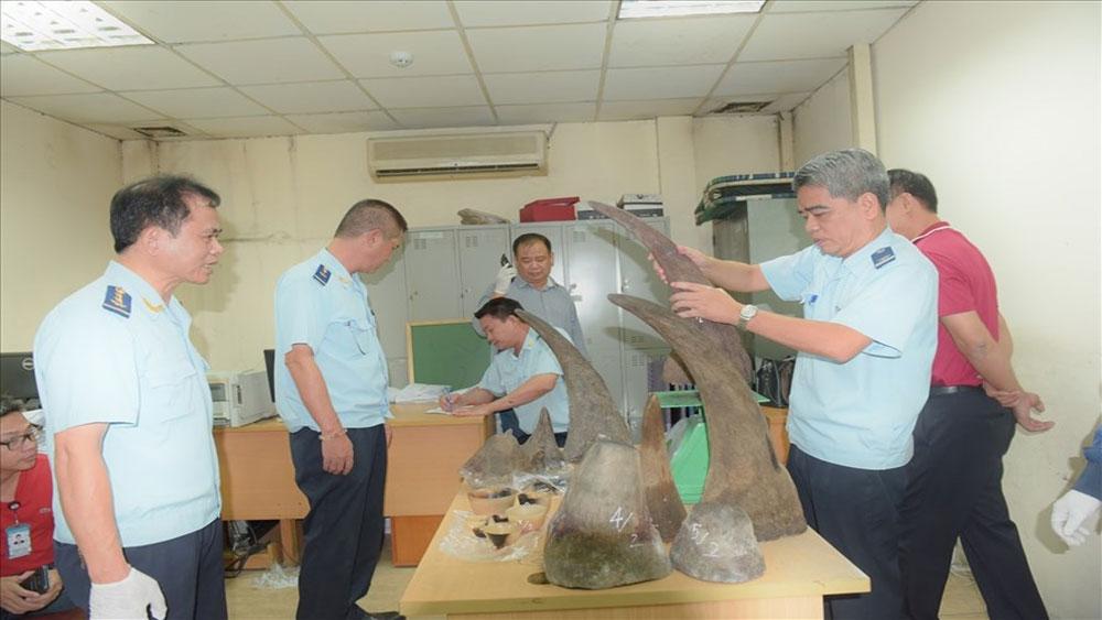 Phát hiện, lô hàng khủng, sừng tê giác, sân bay Nội Bài