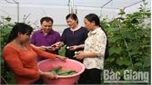 Việt Yên khơi nguồn sức mạnh trong dân