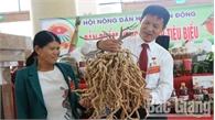 Đặc sắc gian trưng bày sản phẩm bên lề Đại hội Hội Nông dân tỉnh Bắc Giang