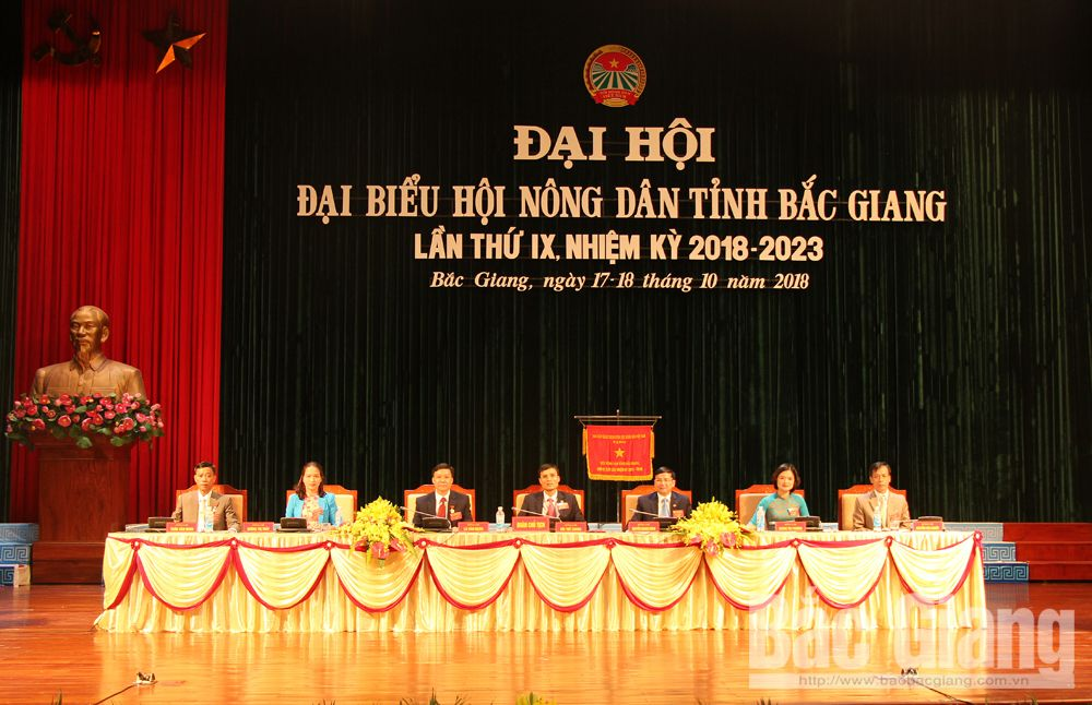 Đoàn Chủ tịch Đại hội Hội Nông tỉnh lần thứ IX.