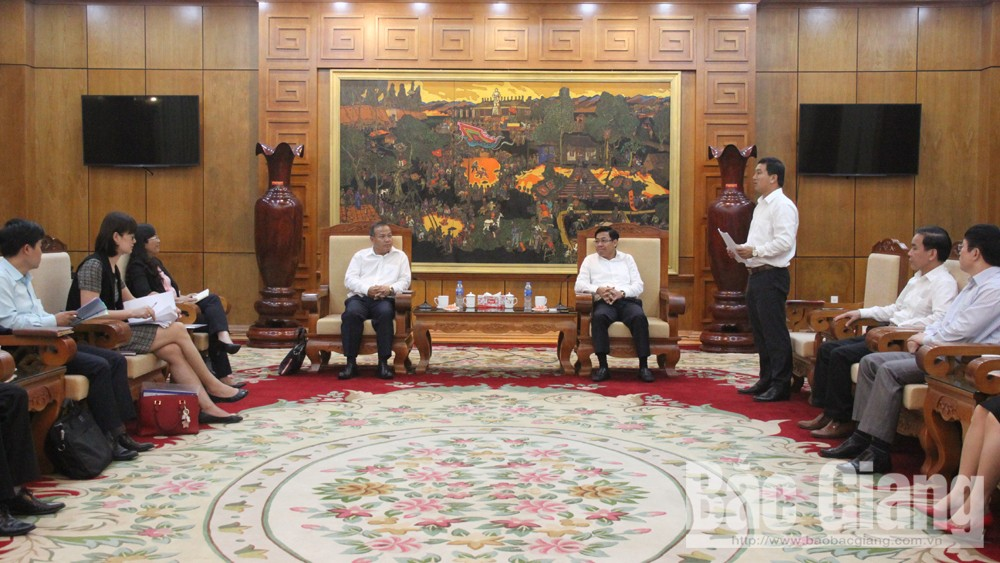 Strengthening cooperative ties between Bac Giang province and Japanese partners