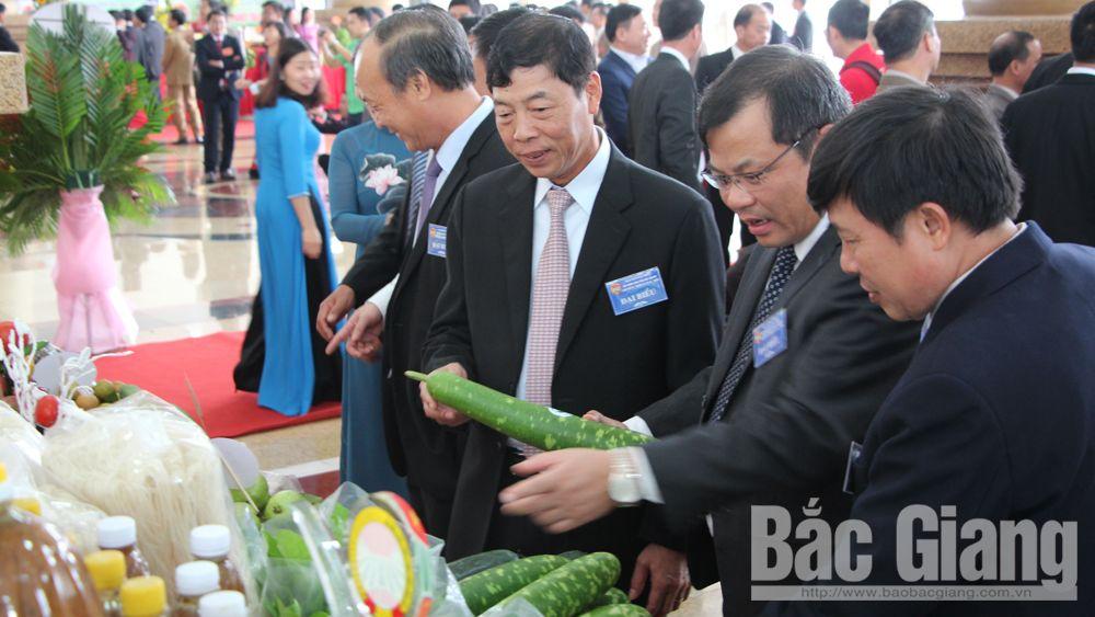 Bí thư Tỉnh ủy Bùi Văn Hải và các đại biểu thăm gian trưng bày của HND huyện Yên Dũng.