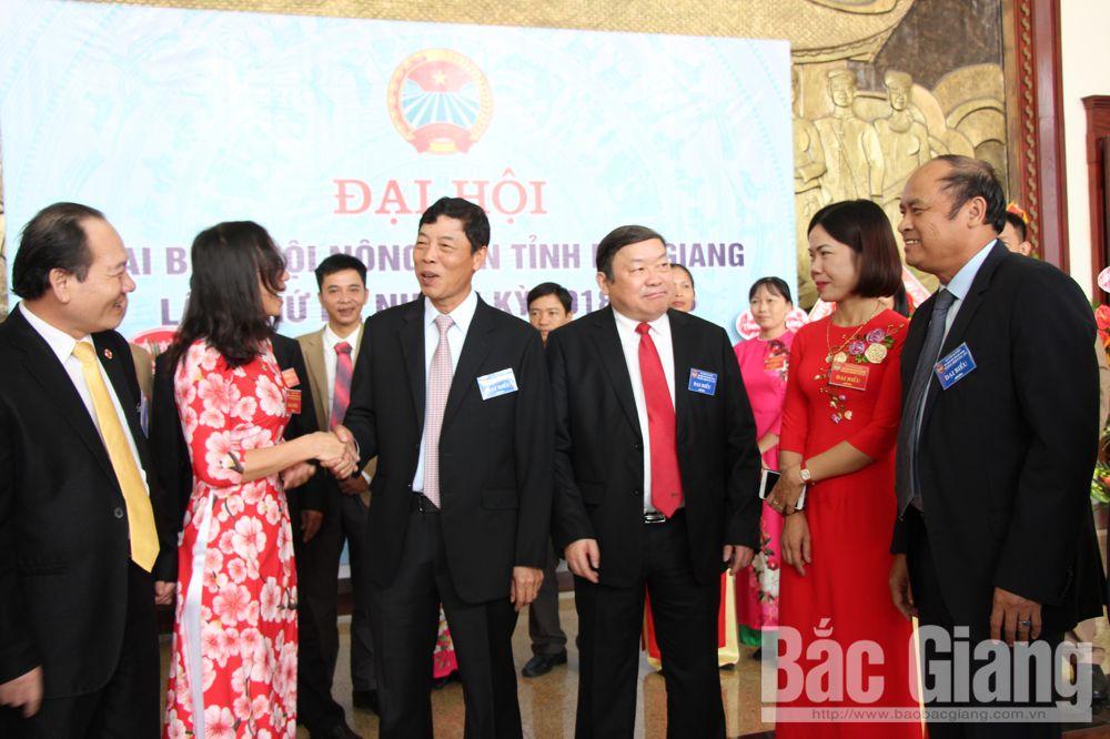 Các đồng chí lãnh đạo T.Ư HND Việt Nam và tỉnh Bắc Giang trò chuyện với đại biểu dự Đại hội.