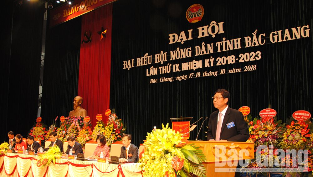 Bí thư Tỉnh ủy Bùi Văn Hải phát biểu tại Đại hội.