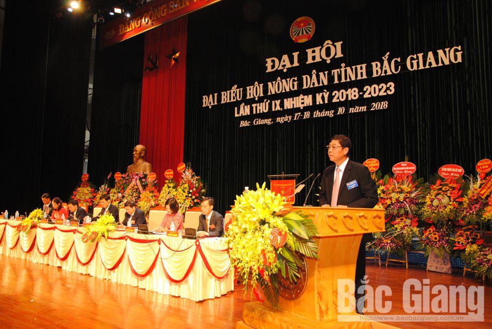 Đồng chí Bùi Văn Hải, Bí thư Tỉnh ủy phát biểu tại Đại hội.