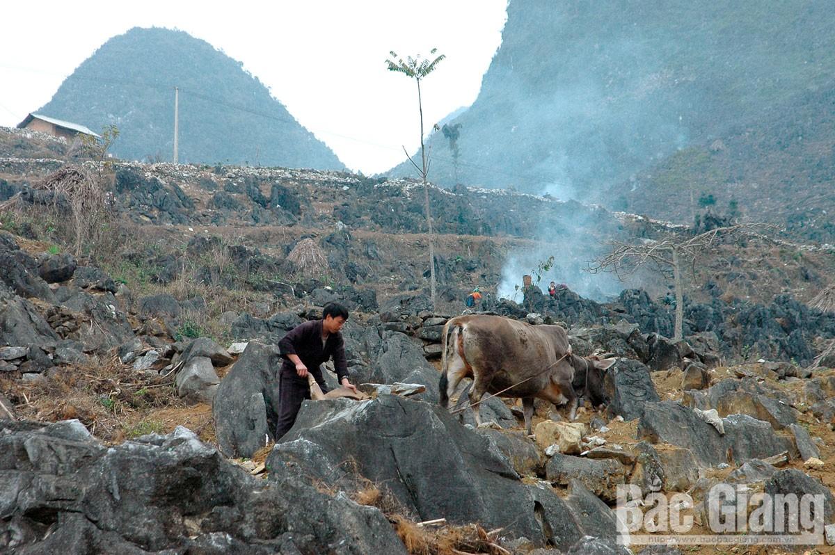 Mùa thu, cao nguyên đá, Hà Giang, Lũng Cú, Mã Pì Lèng