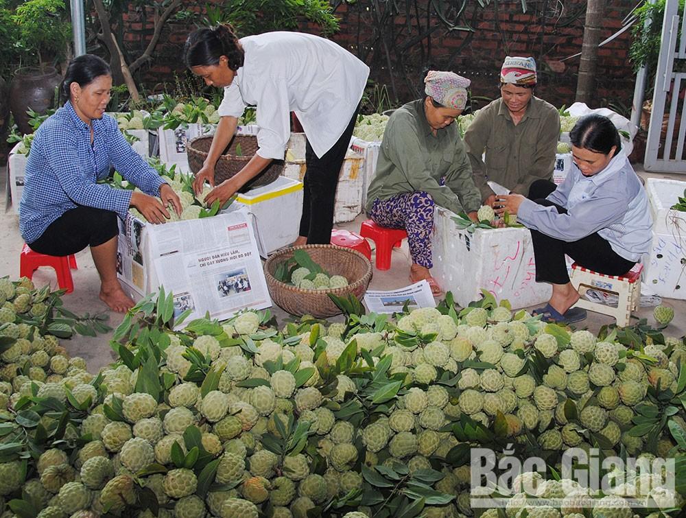 Lục Nam, xây dựng sản phẩm đặc trưng, na dai Lục Nam, dứa Bảo Sơn, hạt dẻ Tứ Sơn, sông Lục - núi Huyền