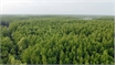 Finland helps Vietnam build forestry database