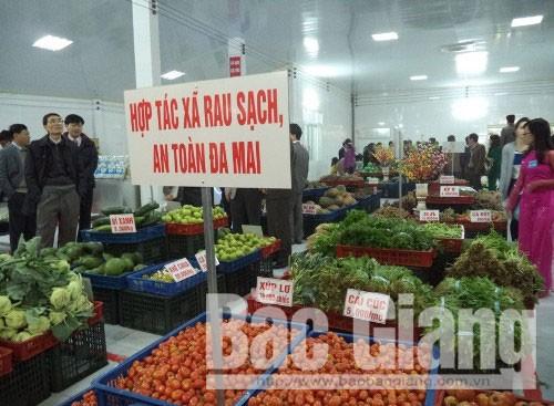 Không để xảy ra ngộ độc thực phẩm và dịch bệnh nguy hiểm