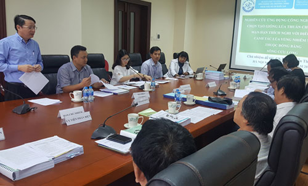 giống lúa chịu mặn, GS Nguyễn Thị Lang, Chương trình Đổi mới, công nghệ quốc gia