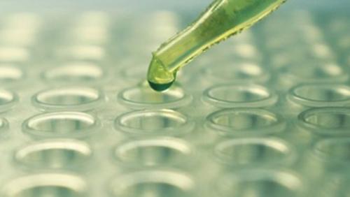 Loại thuốc tăng gần gấp đôi tuổi thọ của động vật thí nghiệm