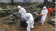 Congo: 170 người tử vong do Ebola