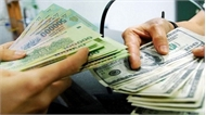 Vụ đổi 100 USD bị phạt 90 triệu đồng: Bộ Tư pháp sẽ kiến nghị sửa đổi quy định về mức phạt