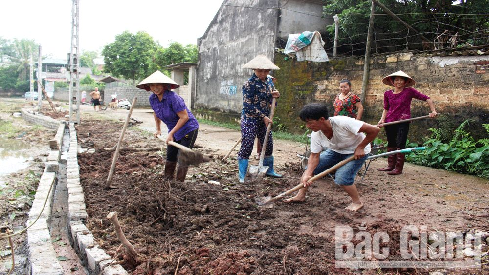 cứng hóa đường giao thông nông thôn, Tân Yên, Bắc Giang, xây dựng đường nông thôn