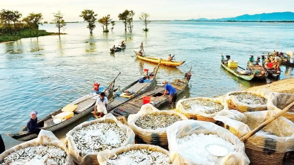 Mekong Delta, floating season, real travel experience, ninth lunar month, floodwaters,  unique tourist season, dien dien flowers, sweet products