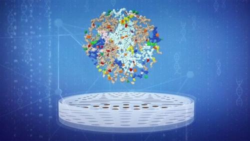 Bằng chứng hạt nhựa xâm nhập cơ thể người qua thức ăn