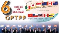 6 quốc gia đã phê chuẩn Hiệp định CPTPP
