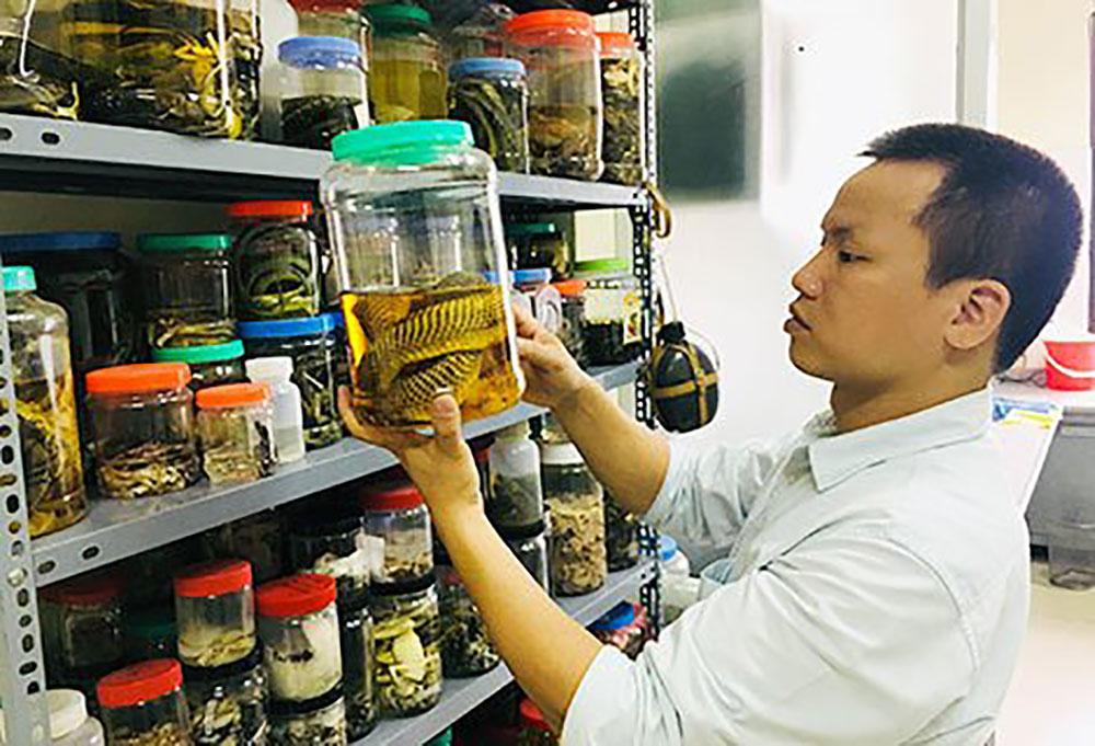 Tiến sĩ, có thể ngửi mùi rắn, Nguyễn Thiên Tạo