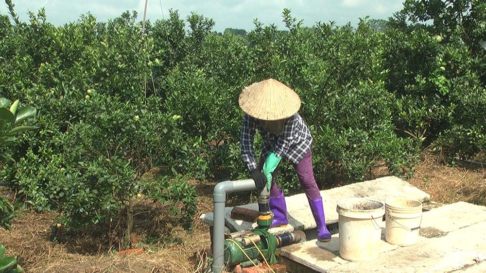 Dự án Lcasp, đưa giải pháp, xử lý tối ưu, đến các trang trại