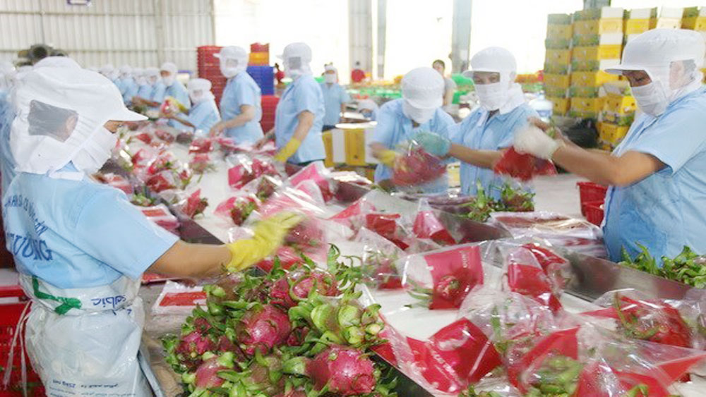 Fruit, vegetable exports valued at 3.3 billion USD
