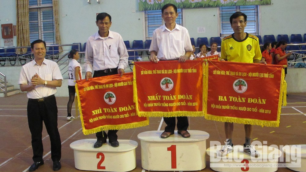 Bac Giang city, ranks first, traditional sports festival, older persons, Bac Giang province, Association for the Elderly, soft volleyball competition,