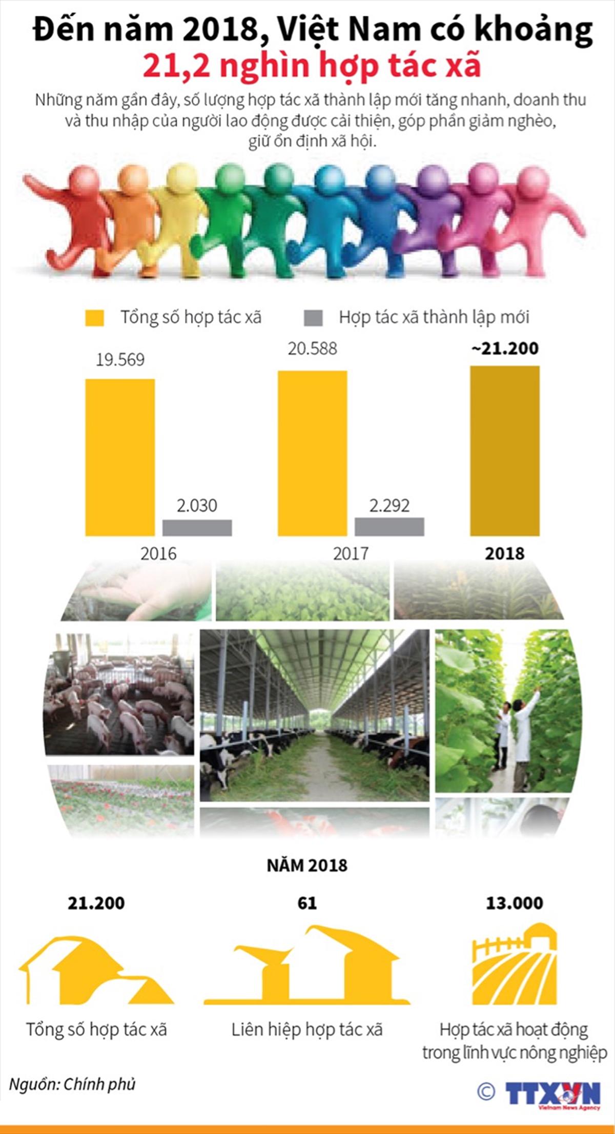 số lượng hợp tác xã, thành lập mới, tăng nhanh, doanh thu, người lao động, giảm nghèo, ổn định xã hội