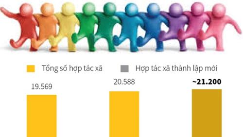 Đến nay Việt Nam có khoảng 21,2 nghìn hợp tác xã