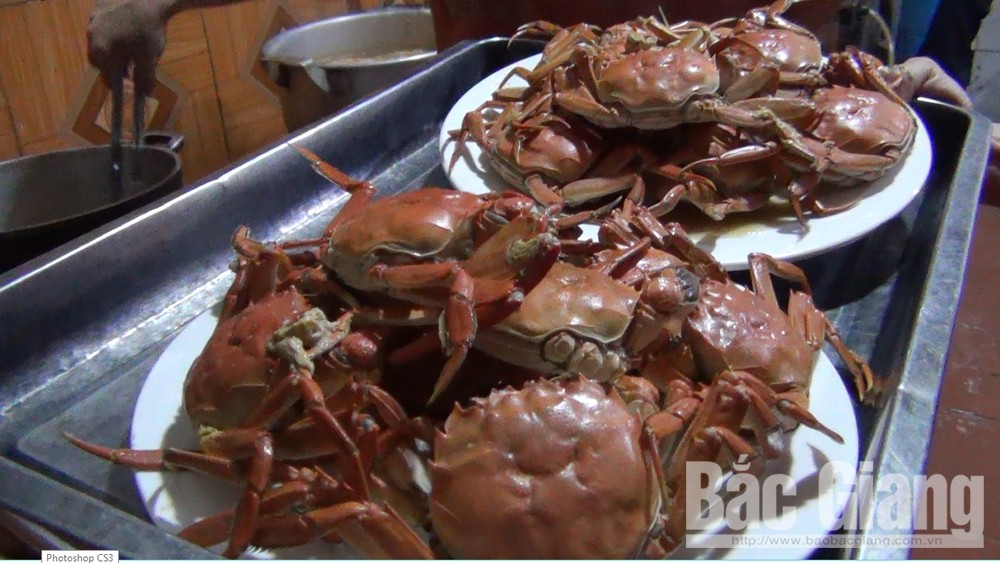 Da crab, specialty of Yen Dung district, Bac Giang province, special product, rare species, Da crab population, living environment changes, largest volume,  famous landscapes