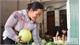 Luc Ngan fruit fair scheduled on November 24 – 29