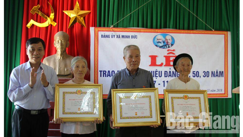 Việt yên, huy hiệu đảng, cách mạng tháng Mười Nga