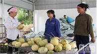 Hợp tác để phát triển nông nghiệp bền vững