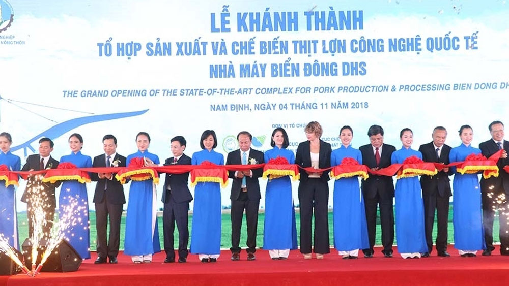 Pork processing complex, Nam Dinh province, hi-tech pork slaughterhouse, international standards, total investment, supply chains