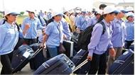 Thí điểm đưa lao động đi làm việc tại Thái Lan
