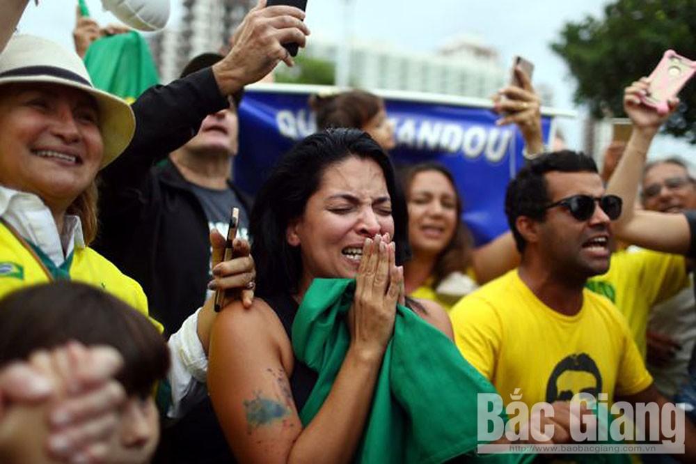 Bầu cử Tổng thống Brazil, cánh hữu thắng thế, Jair Bolsonaro, Nam Mỹ, rừng Amazon