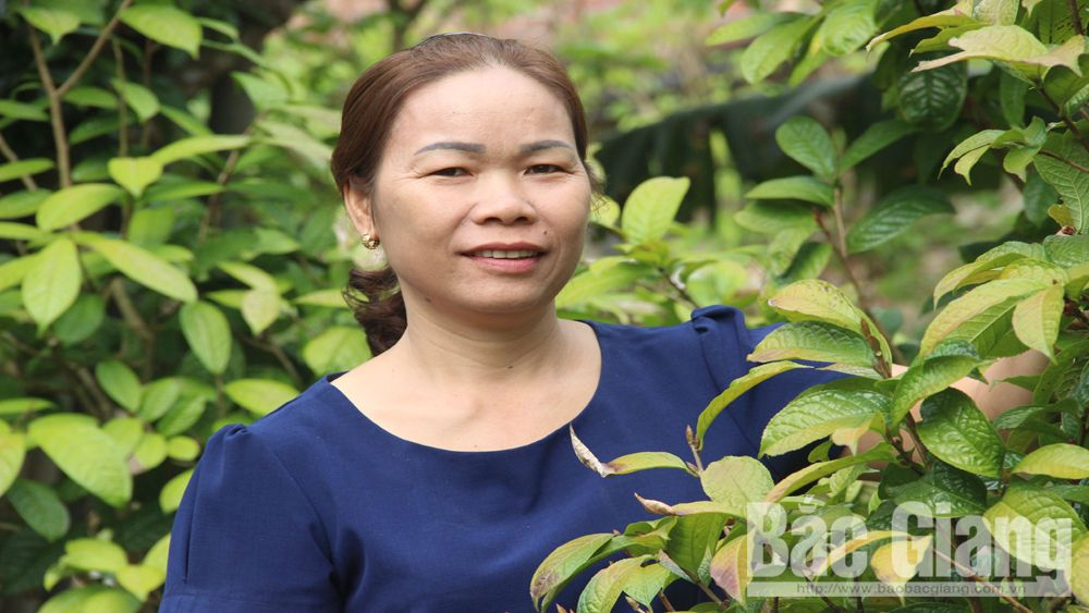 Ha Thi Chanh raises stature of local herbal medicine