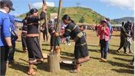 Khai mạc lễ hội hoa dã quỳ dưới chân núi lửa Chư Đăng Ya