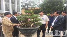 Hội Sinh vật cảnh huyện Lạng Giang có hơn 800 hội viên
