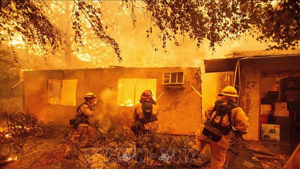 Mỹ, số người thiệt mạng, cháy rừng, California, tăng lên, mức kỷ lục