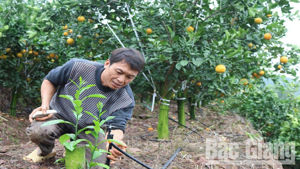 Đào tạo nghề cho nông dân: Sát nhu cầu từng nhóm đối tượng