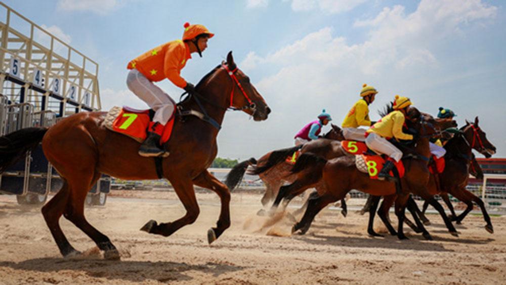 Hà Nội xây dựng đề án tổ hợp giải trí, trường đua ngựa 500 triệu USD