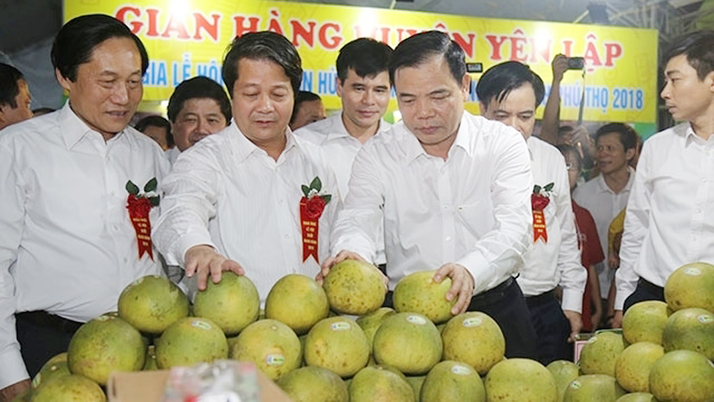 Phu Tho province holds fair to promote Doan Hung pomelos
