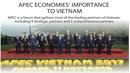 APEC economies' importance to Vietnam